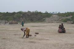 砖工厂在印度 库存照片