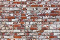 砖无缝的纹理墙壁 库存照片