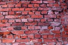 砖构造,砖墙 库存图片