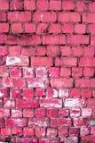 砖桃红色墙壁 免版税库存图片