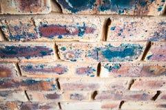 砖棕色花前面庭院墙壁 免版税库存图片