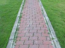 砖步行道路在有豪华的草的一个庭院里 库存照片