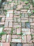 砖步行 免版税库存照片