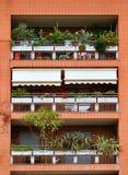 砖瓦房的阳台,装饰用花和植物 库存图片