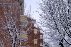 砖瓦房背景和多雪的公园 免版税库存图片