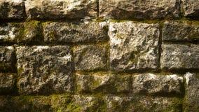 砖生苔墙壁 免版税库存照片