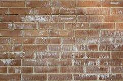 砖砌由与白色石灰的棕色砖做成 纹理,背景 图库摄影