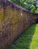 砖砖覆盖范围毁坏了侧向老墙壁天气 库存照片
