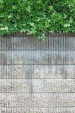 砖种植墙壁 库存图片
