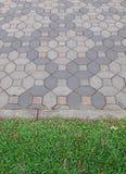 砖草坪路面 库存照片