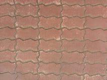砖蠕虫 免版税库存照片