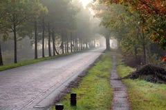砖街道在小村庄在荷兰 免版税库存照片