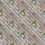 砖设置无缝的照片纹理与绿色青苔的 库存照片