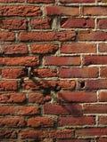 砖详细资料 免版税库存照片
