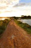 砖路在乡区 库存照片