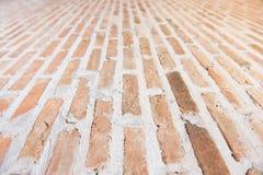 砖路 免版税图库摄影