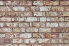 砖轻的墙壁 免版税图库摄影