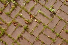 砖陶砖模式红色土地 免版税图库摄影