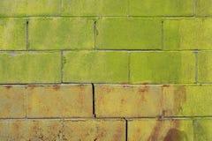 砖绿色墙壁 免版税库存照片