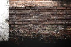 砖grunge红色纹理墙壁 库存照片
