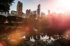 破晓与日落在有Skyscrappers inBackground的中央公园 免版税图库摄影