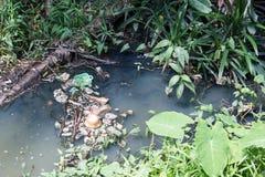破烂物在水中 绿色附注污染水 库存照片