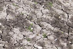破裂的农田 免版税库存照片
