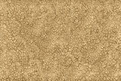 破裂的土壤和肮脏的地面在一片干燥沙漠 皇族释放例证