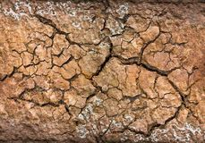 破裂的土壤纹理 免版税库存照片