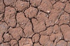 破裂的土壤纹理 库存图片