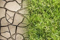 破裂的地面和绿色草甸-气候变化概念图象 免版税库存照片