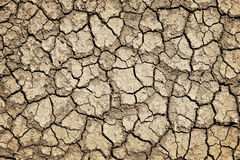 破裂的天旱干燥陆运 库存照片