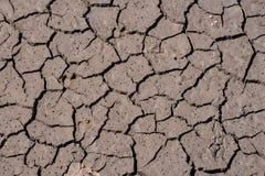 破裂的干燥地球纹理 库存图片