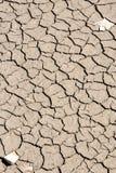 破裂的干燥地球纹理 免版税图库摄影