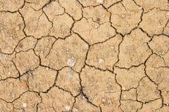 破裂的干燥地球 免版税库存图片