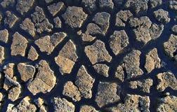 破裂的干燥地球 图库摄影