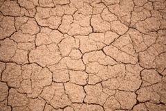 破裂的干燥地面纹理 免版税库存图片