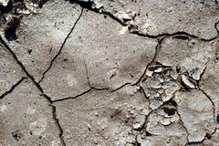 破裂的干燥泥 免版税库存图片