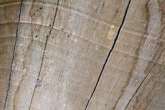 破裂的木委员会纹理照片 布朗木材被风化的结构 葡萄酒设计的自然本底 库存图片