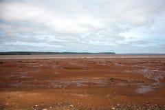 破裂的泥滩 库存照片