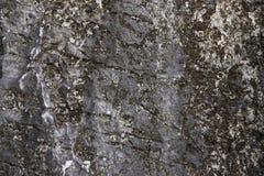 破裂的石纹理背景 困厄的自然表面 自然设计模板 火山岩破裂的表面 库存图片