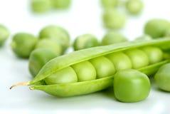 破裂的绿色宏观豌豆荚射击 免版税图库摄影