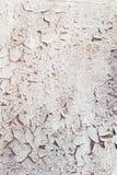 破裂的被风化的老白锈病油漆背景 免版税库存照片