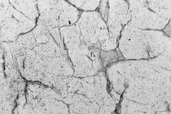 破裂的黏土背景  库存图片