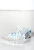 硅树脂牙齿盘子和模子 库存图片