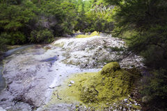 硫磺土墩 库存照片