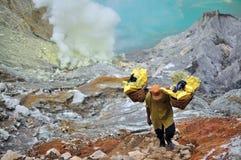 硫磺矿工在Kawah伊真火山, Java,印度尼西亚 图库摄影