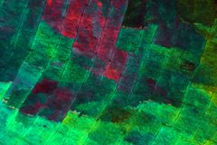 硫磺水晶在显微镜下 免版税库存图片
