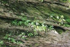 硬岩 库存图片