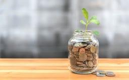硬币和种子在清楚的瓶 免版税库存照片